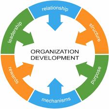 Nghề Nhân sự – Phần 6: Organization Development (OD)