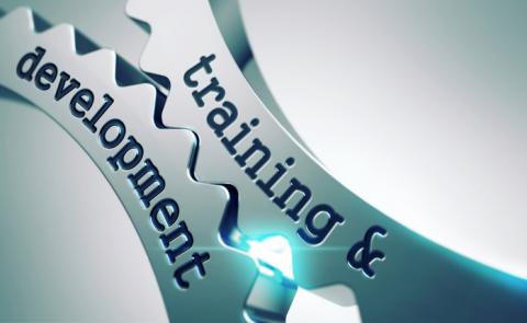 Nghề Nhân sự – Phần 4: Đào tạo & Phát triển (T&D)