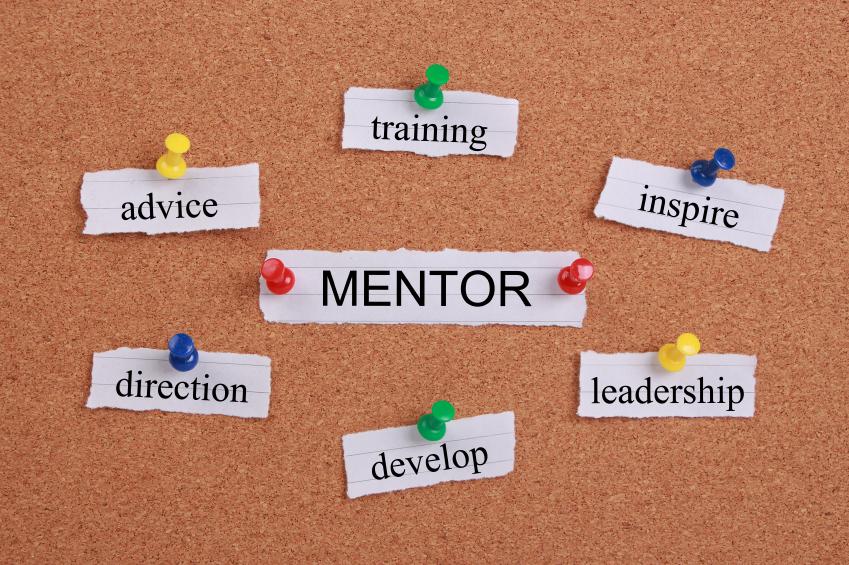 Bạn hướng dẫn thực tập sinh như thế nào?
