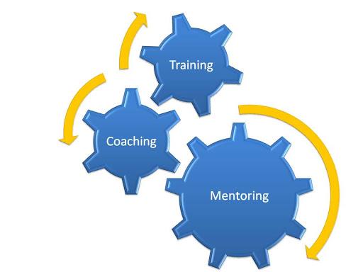 Khi nào thì bạn cần được TRAINING hay COACHING hoặc MENTORING?